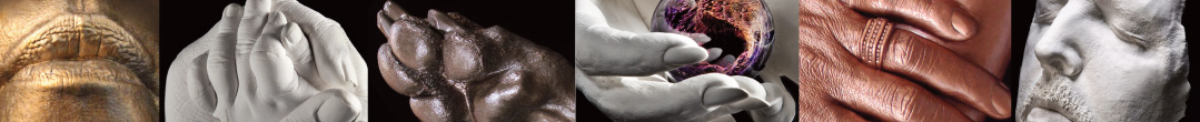 Lifecasting Samples by Pulse-Lifecasting